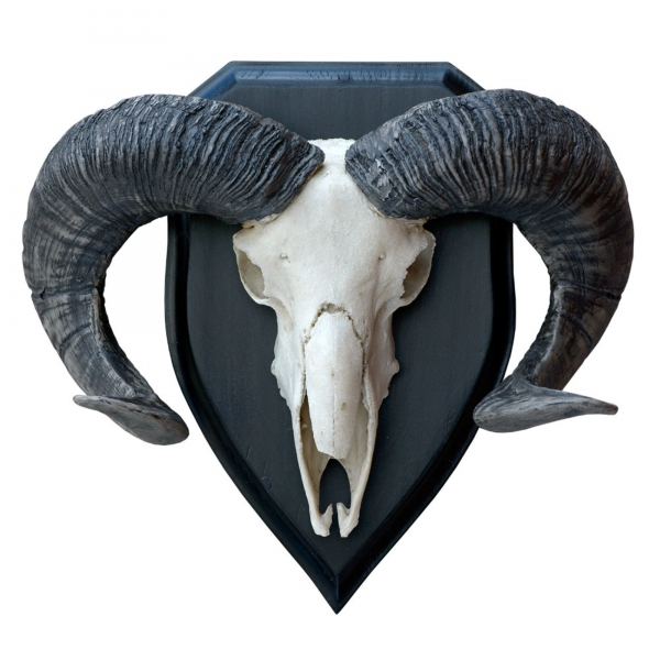 Resin Black & White Ram Head - 14.5 Inch Decorative Trophy Head