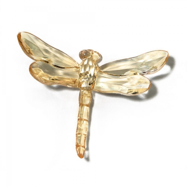 Honey Dragonfly with Spike