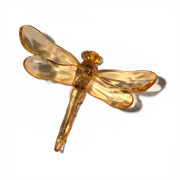 Orange Dragonfly with Spike