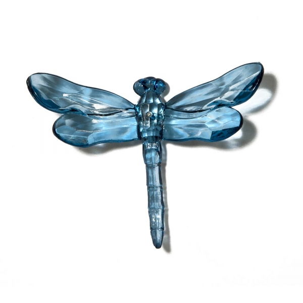 Turkish Blue Dragonfly with Spike